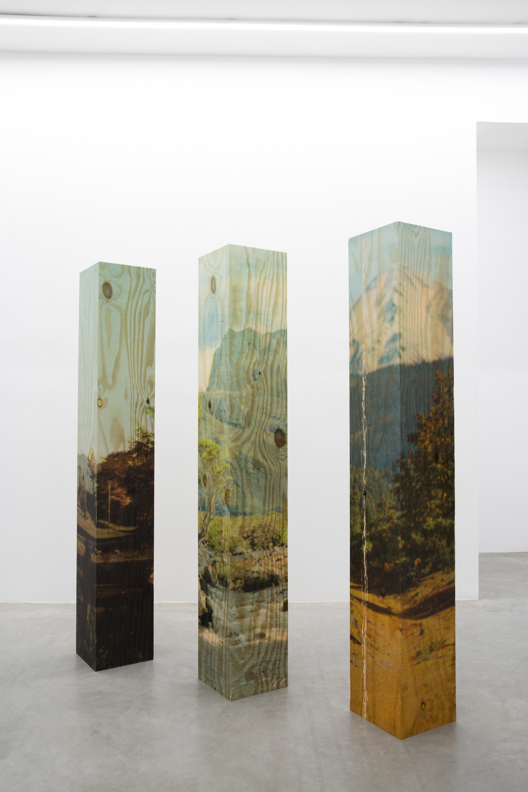 Berndnaut Smilde, Gamut, 2014, inkjet on printed wood, 29 x 29 x 190 cm each